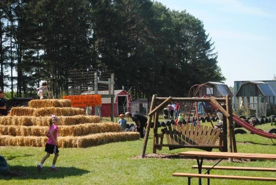 Freeland, MI: Playground
