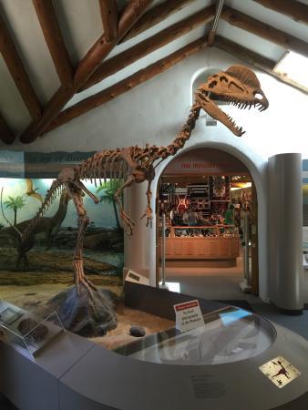 Museum of Northern Arizona: photo0.jpg