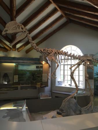 Museum of Northern Arizona: photo1.jpg
