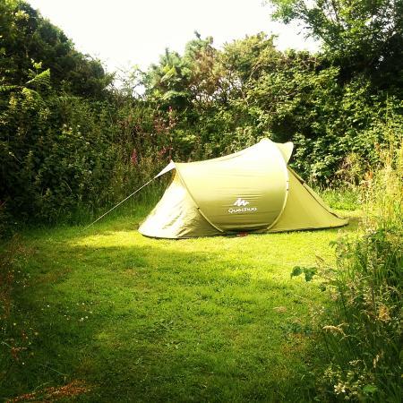 Clynnogfawr, UK: Camping space.