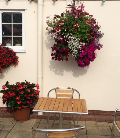 Great Bromley, UK: Gorgeous flowers