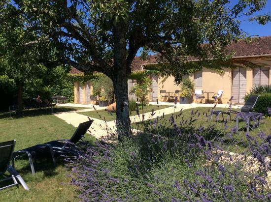 Le Mas De Castel : Garden by barn rooms