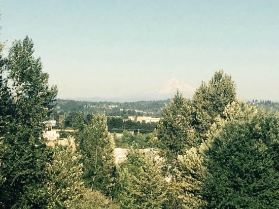 Clackamas, Oregón: If my phone was better you could see mt hood!