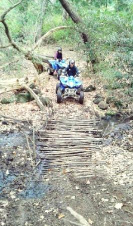 SA Forest Adventures: Quad Bike