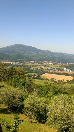 Agriturismo Ampugnano照片