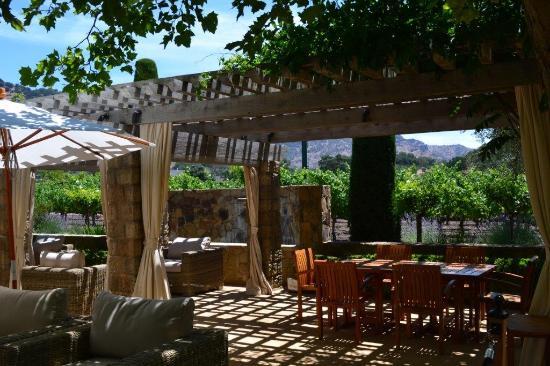 Cliff Lede Vineyards : beautiful garden