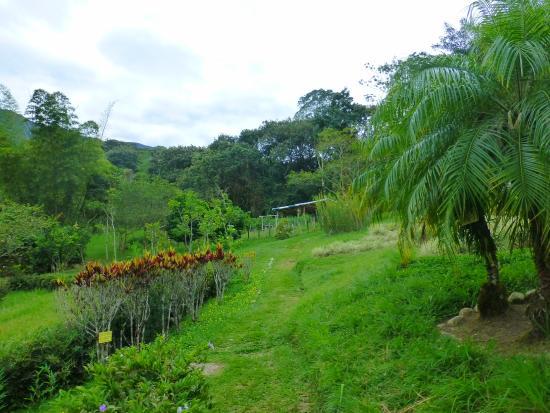 Jardín Botánico San Jorge