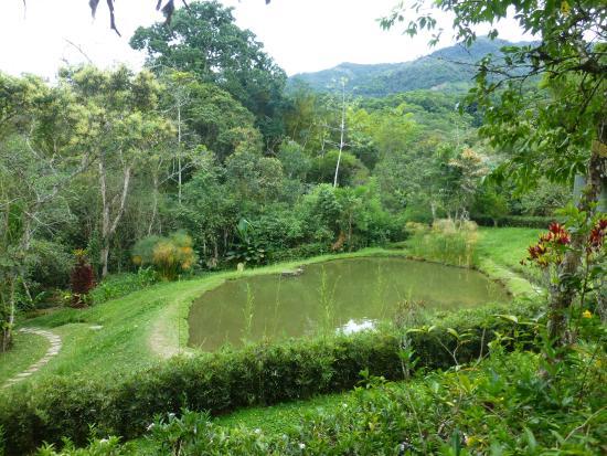 Lago de tortugas picture of jardin botanico san jorge for Villas de jardin seychelles tripadvisor