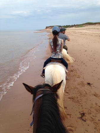 Lakeside Circle T Trail Rides: Ride on the beach
