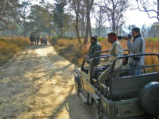 ‪Corbett Jeep Safari‬