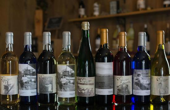 Olivero's Vineyard