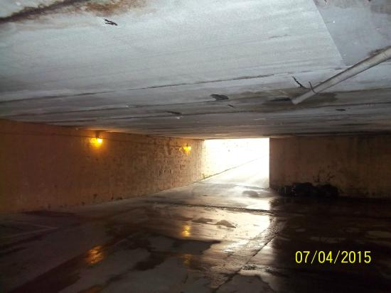 Royal Town House Motel : Parking Garage--Mold