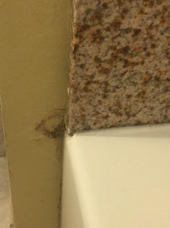 Comfort Inn & Suites Near Fort Gordon: Moldy old leak, moldy shower wall