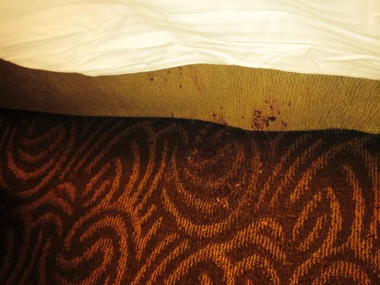 New York Hilton Midtown : Dirty bed skirt and wet floor