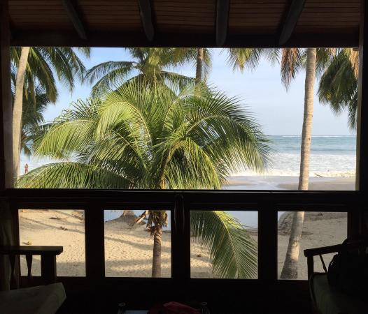 Samara Tree House Inn: View from the room and from the beach!