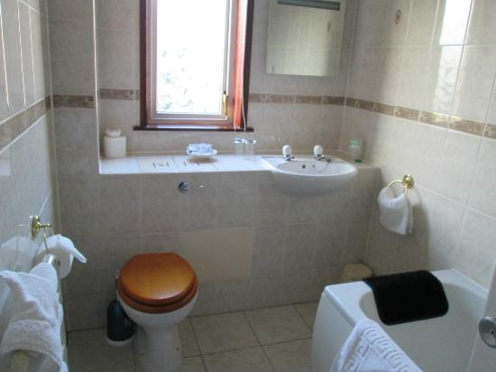 Kings Park Hotel : Toilet and Sink