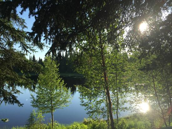 Gate Creek Cabins: The view from Beaver Cabin