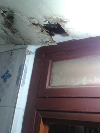 Ashtamudi Homestay: Torn up ceiling of the bathroom where muddy rain water leaks