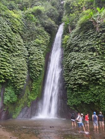 Buleleng, Indonesien: And a waterfall to boot