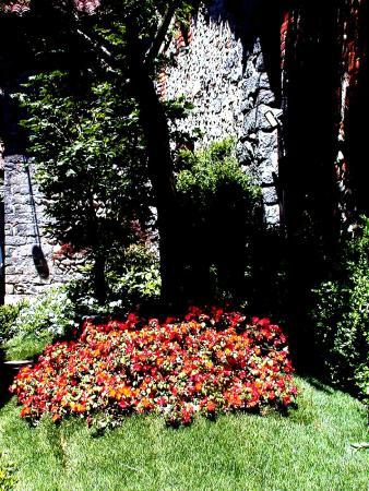 Fiore 05.Ricetto In Fiore 05 Picture Of Ricetto Di Candelo Tripadvisor