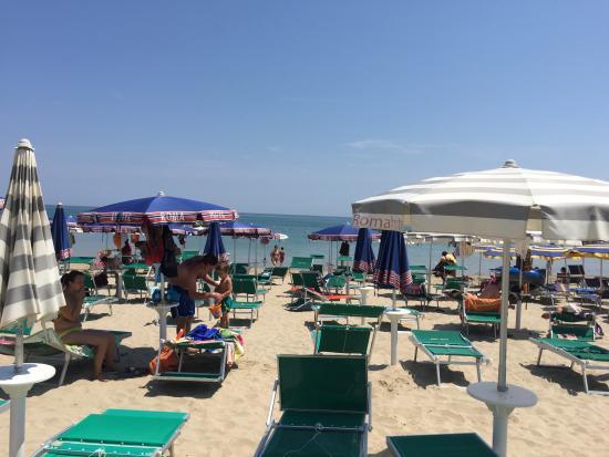 Baia Blanca Ristorante Sul Mare Peshe & Sushi : The beach we were at near by.