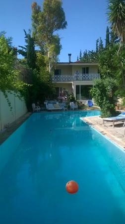 St. Thomas Bed and Breakfast: Relaxing in the pool after a hard days sighteeing inAthens