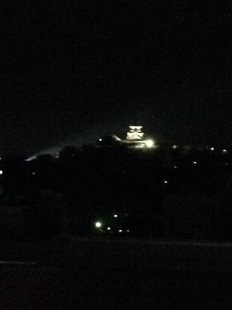 Hotel No.1 Kochi: ライトアップ高知城
