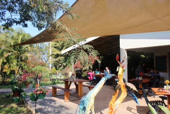 Vickery Seedlings Coffee Shop and Tea Garden