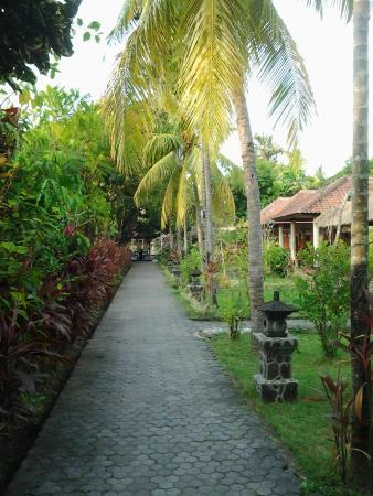 Puri Bali Hotel : nice garden