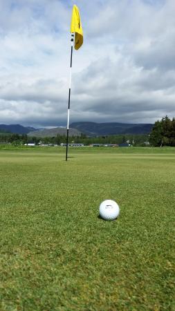 Newtonmore Golf Club: Wonderful greens and mountain views