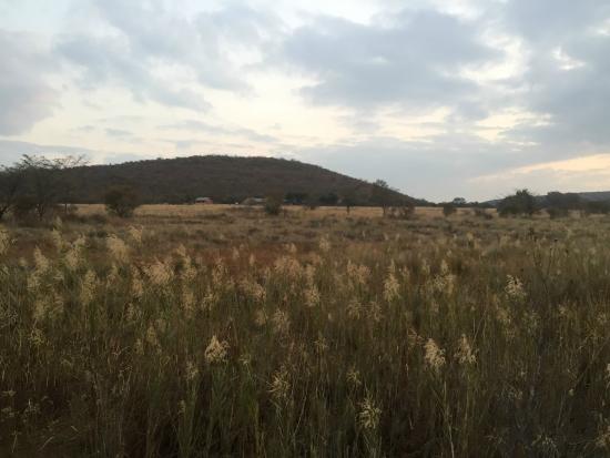Lindani Lodges: Wetland