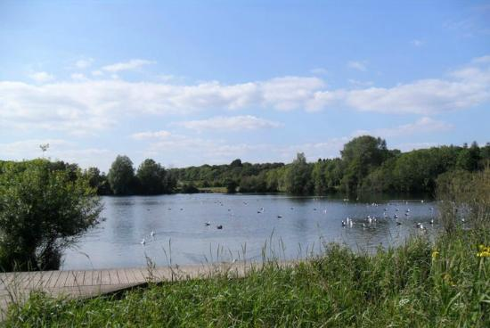 ‪Cosmeston Lakes Country Park‬