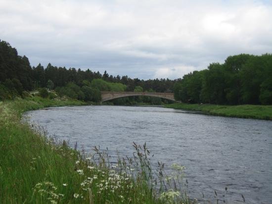 Anagach Woods : GRANTON ON SPEY BRIDGE OVER RIVER