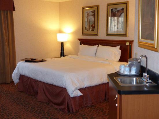 Hampton Inn & Suites Salt Lake City Airport: King bed - Hampton Inn & Suites SLC Airport