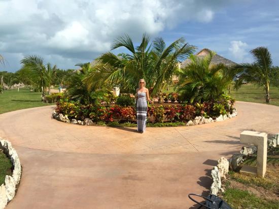 Jardins picture of melia jardines del rey cayo coco for Jardines del rey