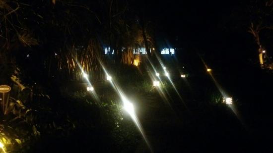 Rim Naam : Lawn beside restaurant