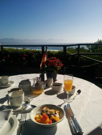 Dolphins' Playground Beachfront B & B: Breakfast with a magnificent view