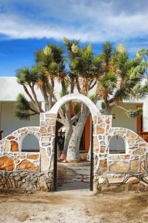 Hotel Mision Catavina: arco y arbol desertico