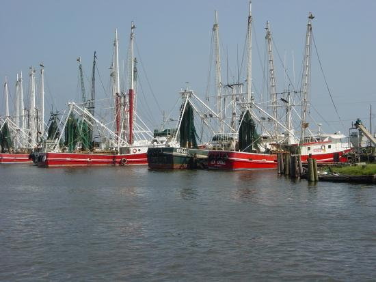 Terrebonne Parish: shrimp boats along the bayou
