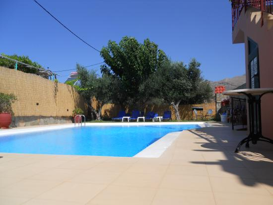 Olive Tree Apartments: Piscina