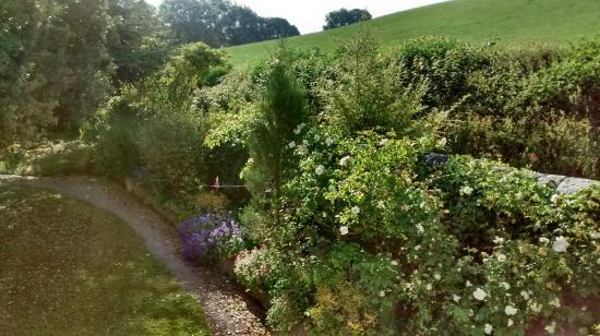 Plas Efenechtyd Cottage B&B: One side of the garden