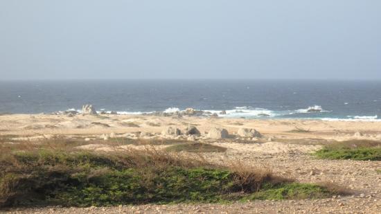 California Dunes: The dunes!