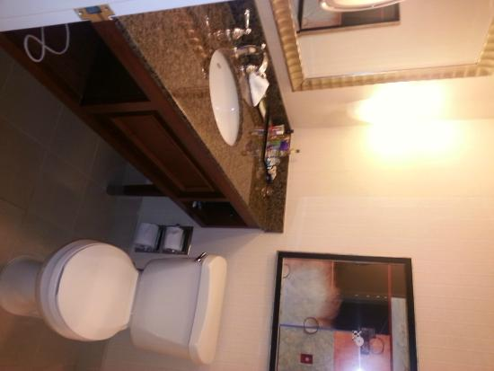 Ontario Airport Hotel and Conference Center: Bathroom