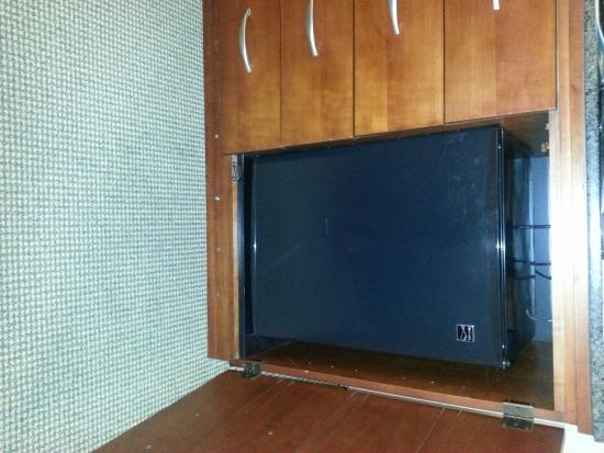 Ontario Airport Hotel and Conference Center: Fridge