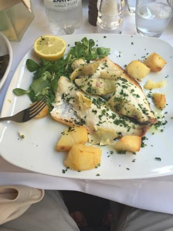 Otium Wine Restaurant: Grilled Sea Bass with artichoke and grilled veg