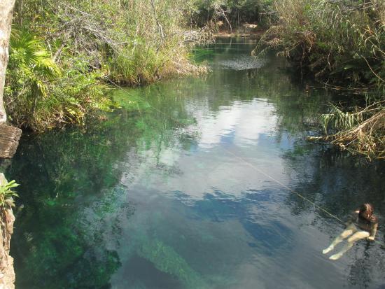 Cenote Crystal: Sitting rope at Cenote Escadero