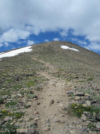 Mount Elbert: hiking trail