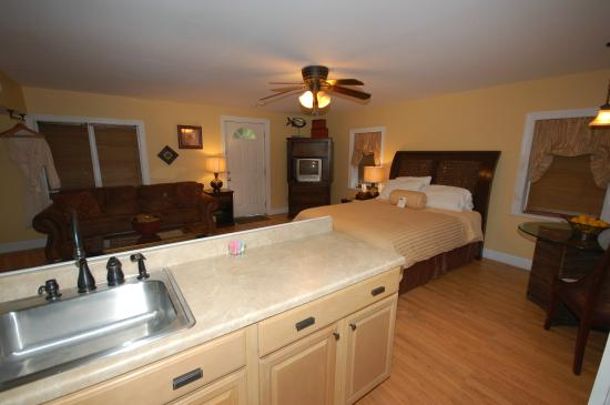 Buttonwood Manor Bed and Breakfast: Buttonwood suite kitchenette