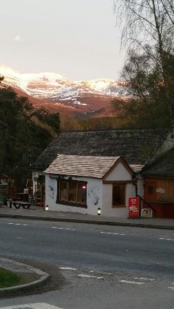 Pine Marten Bar