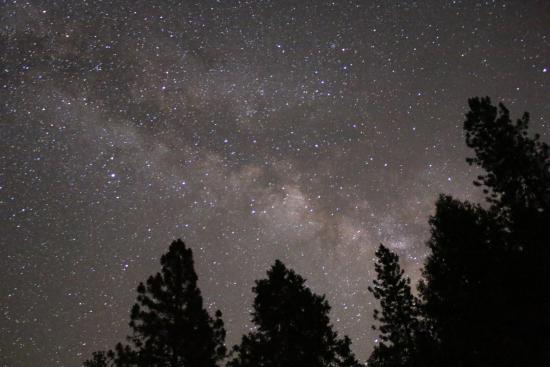Cyndi's Snowline Lodge: Stargazing from parking lot